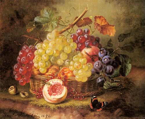 raisins-et-insecte-Kaercher_Amalie