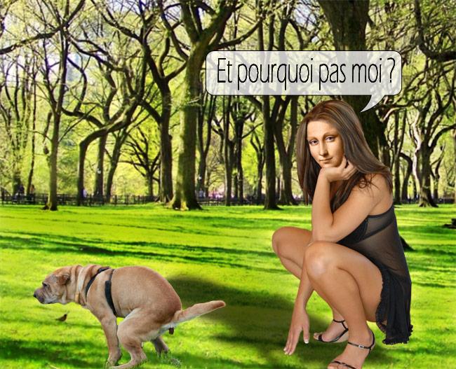 mona-crottes-chien