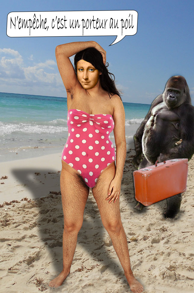 mona-poils-plage-gorille
