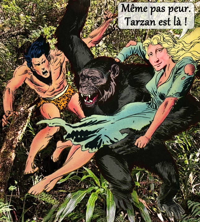 mona-jungle1